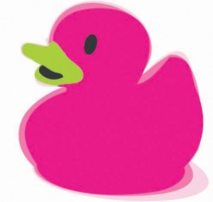 Pink Duck